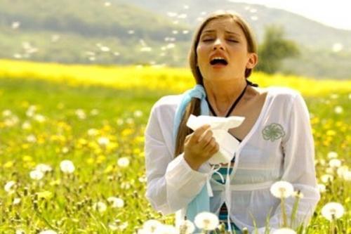 alergias-mas-frecuentes_h1i6x