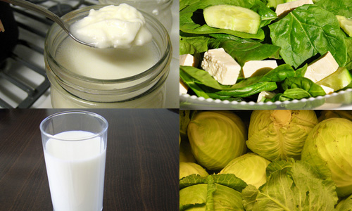 Alimentos como fuentes de calcio