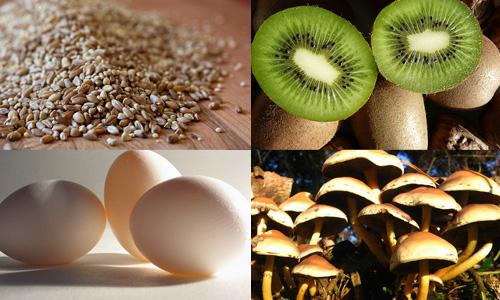 Alimentos que hacen crecer tu cabello