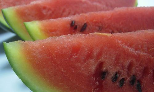 alimentos-que-te-ayudaran-a-bajar-de-peso-en-las-vacaciones_5l7ug