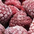 aprende-si-los-alimentos-congelados-son-saludables_x2uhd