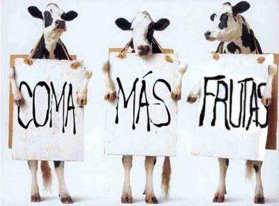 Asociaciones de vegetarianos en España y el mundo