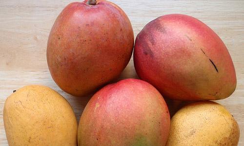 Beneficio de los mangos