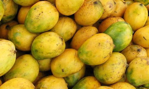 Beneficios para la salud del mango
