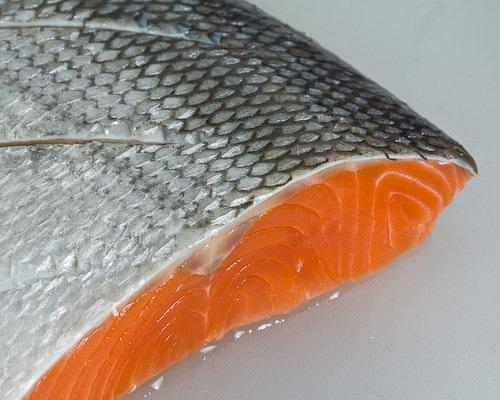 el-salmon_6yrp7