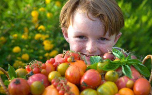 La nutrición en los niños