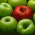 las-manzanas-ayudan-a-perder-peso_t41qb