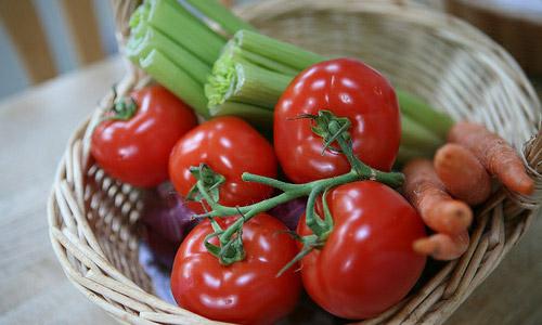Razones por las que debes ser vegetariana