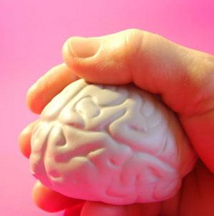 Reducción del cerebro con el paso de los años