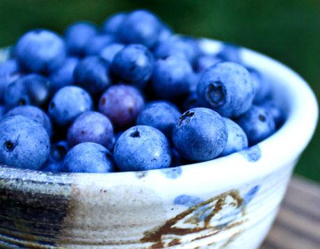 Un fruto llamado mortiño